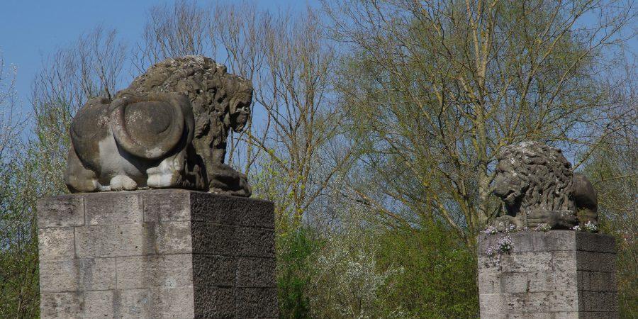 Löwen bei Bad Abbach